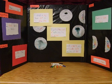how to set up your science fair board